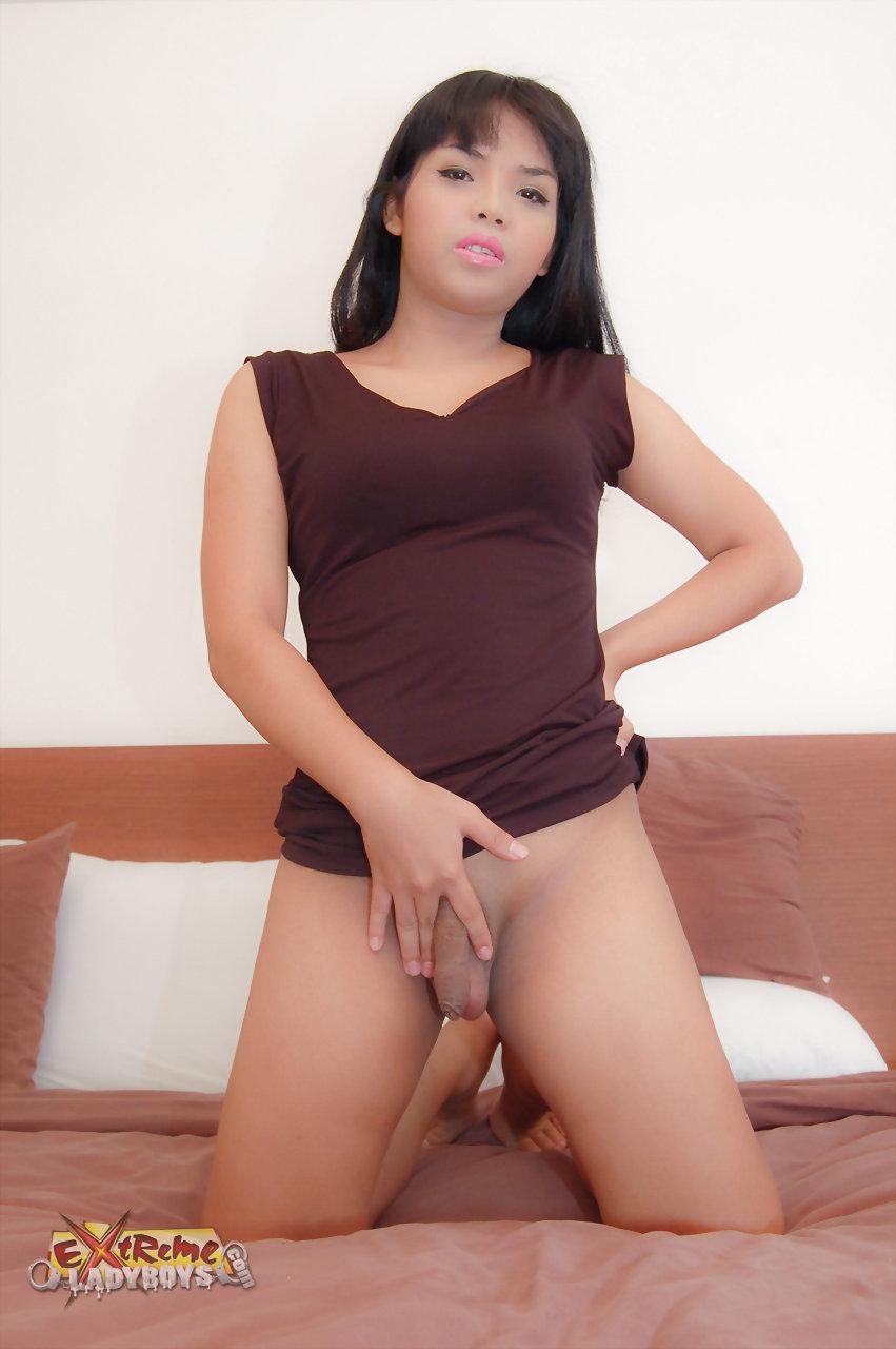 Sapphic erotica extreme ladyboy porn free