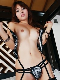 Hottest ladyboy porn photos from HQ collection